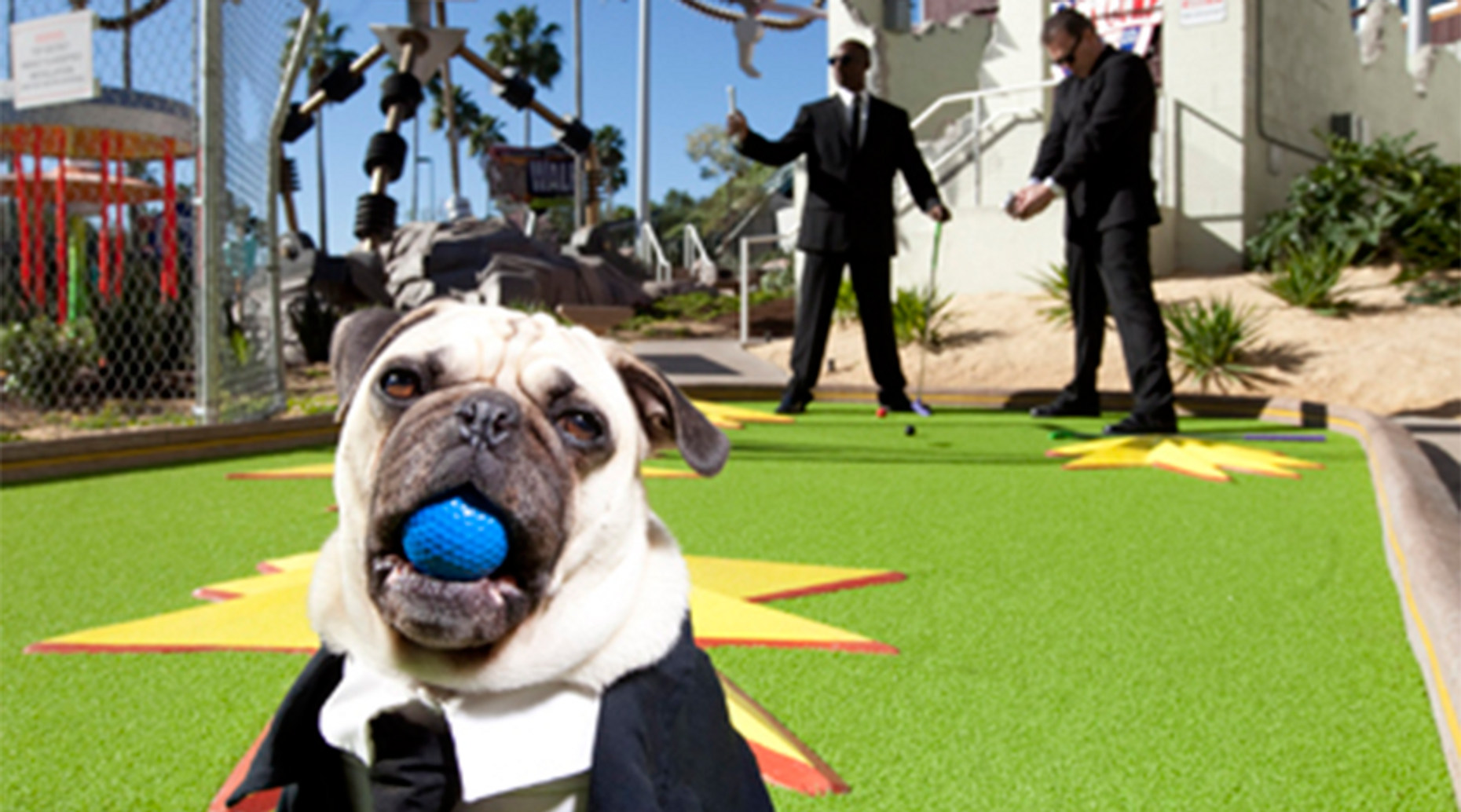 Hollywood Drive-In Golf: Outrageous Mini Golf!