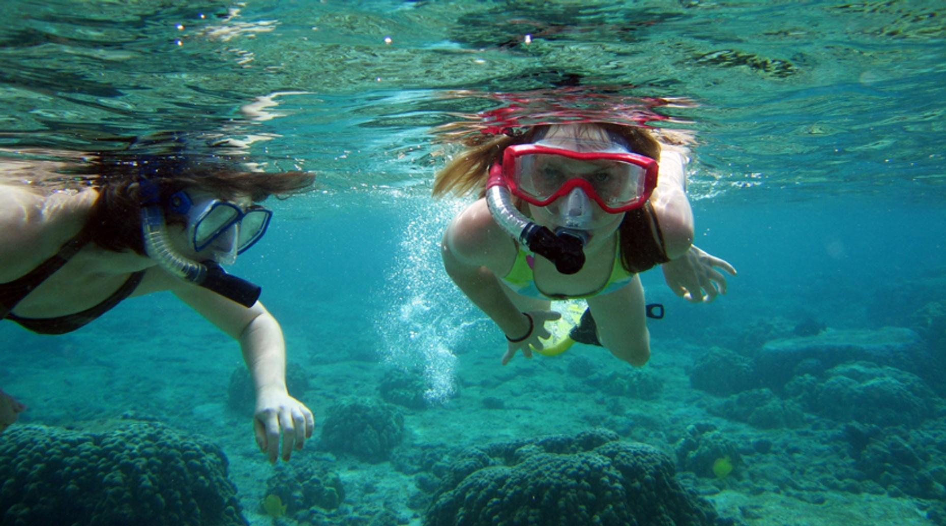 Three-Hour Snorkel & Dolphin Trip in Destin