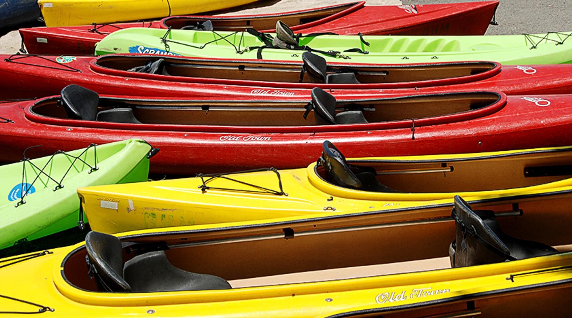 Dyke Marsh Kayak Rental