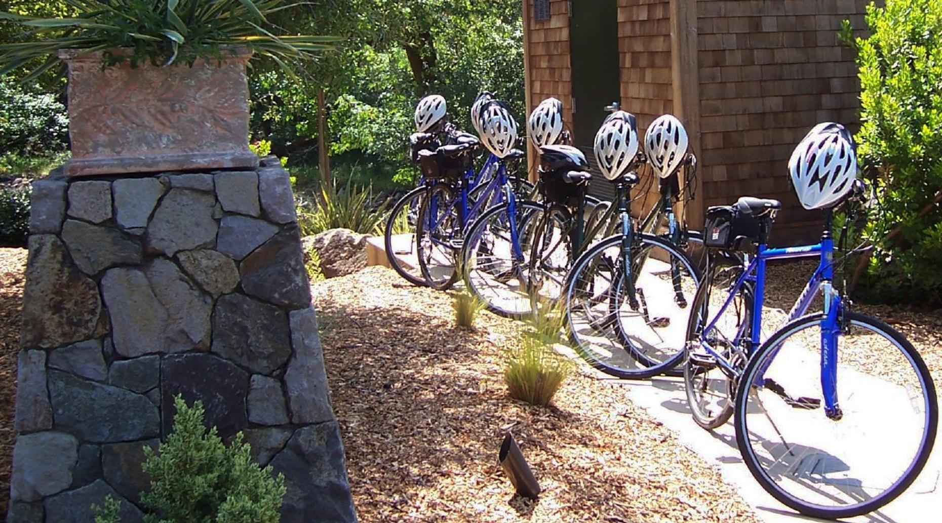 Pennington Scenic & Private Bike Tour