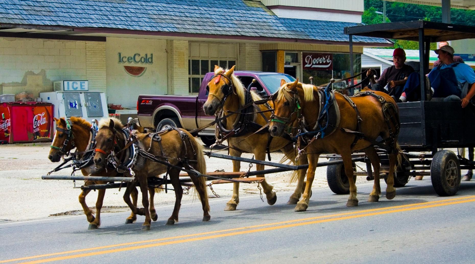 Four-Passenger Wagon Ride in Dallas