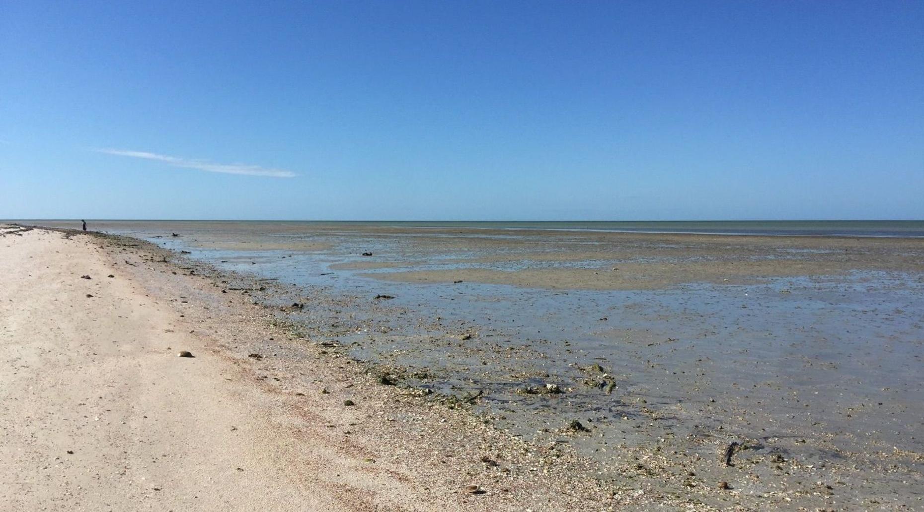 10,000 Island Excursion