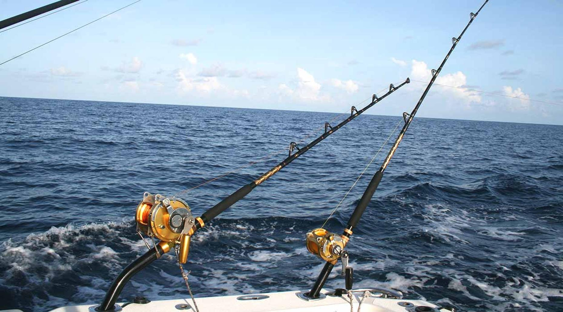 Fishing Charter in the Dominican Republic