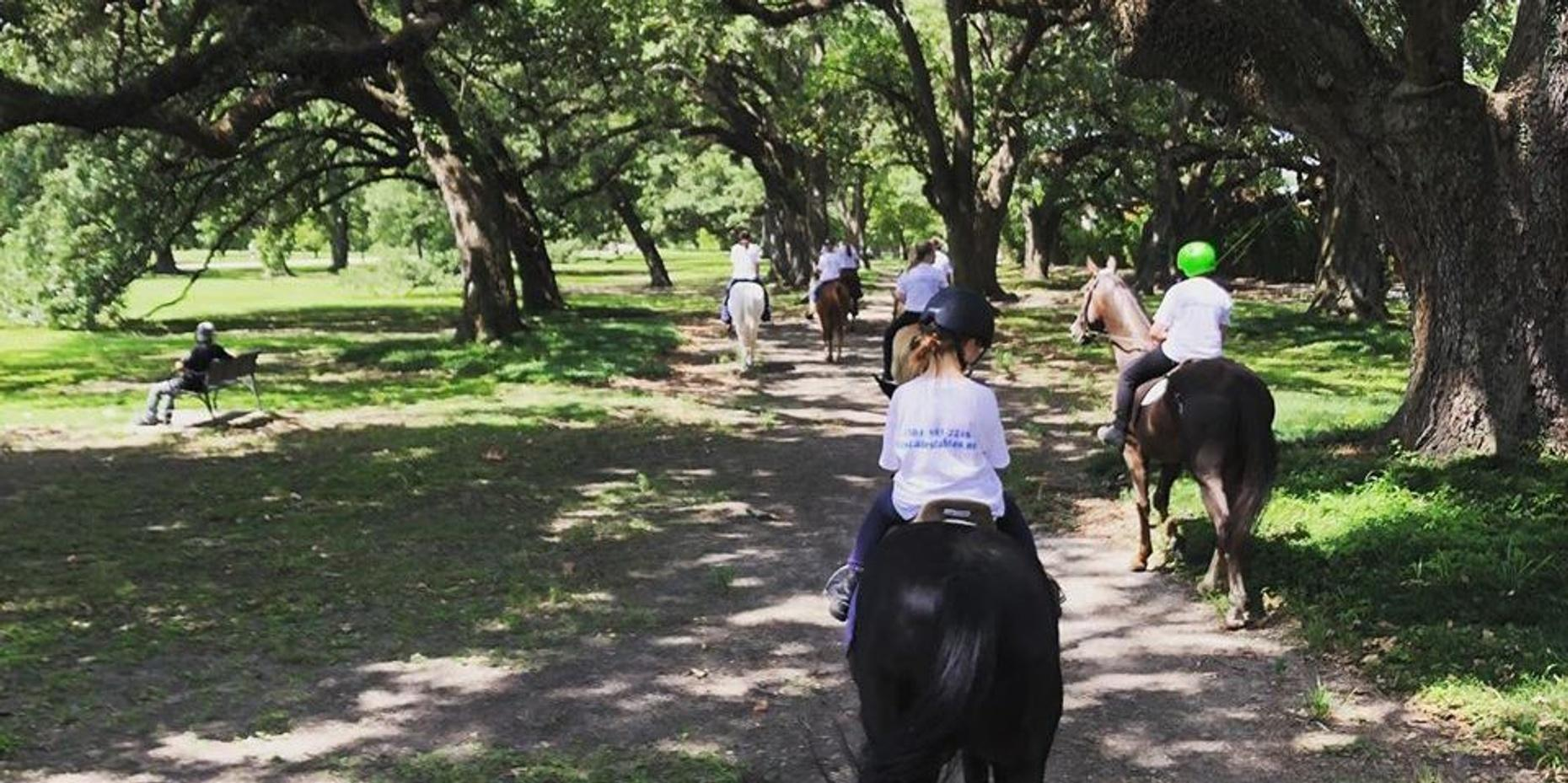 Horseback Trail Rides in New Orleans