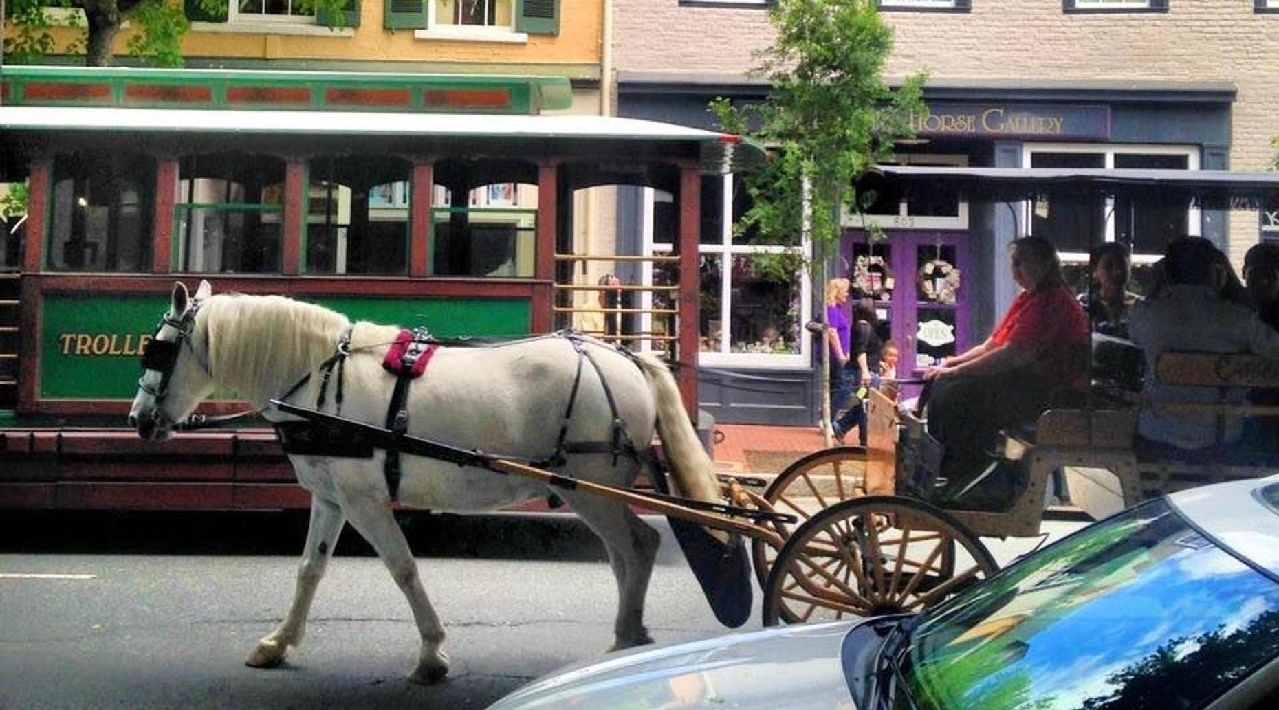Historical Group Carriage Tour