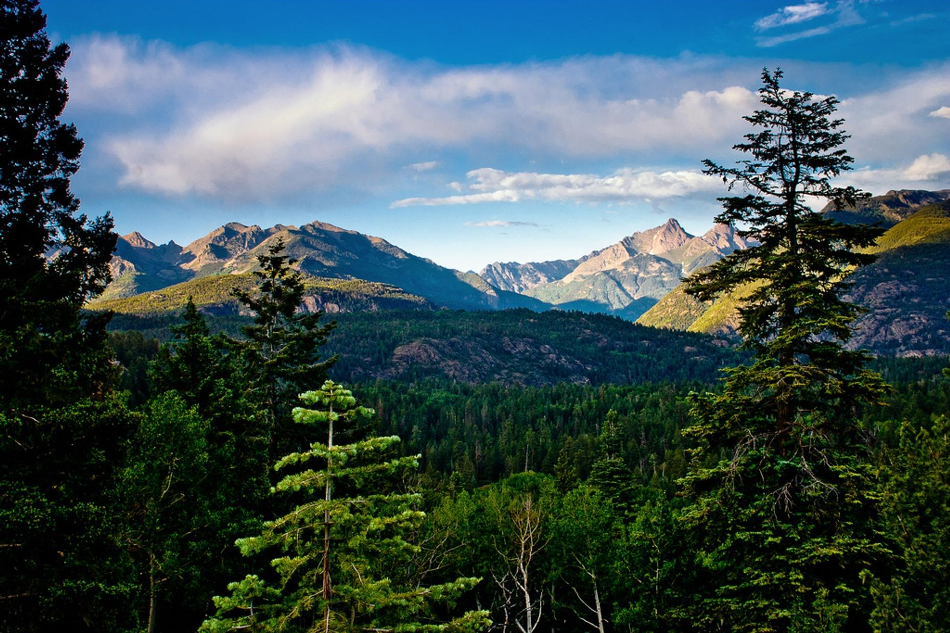 Half Day Jeep Tour in the San Juan Mountains