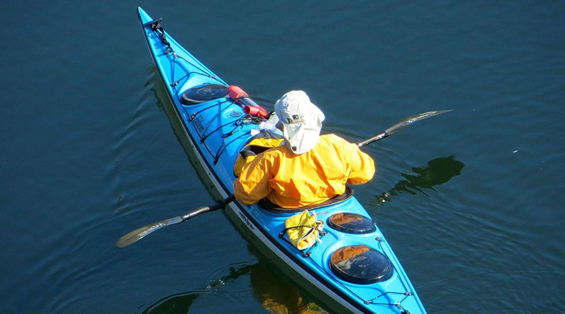 Hilton Head Kayaking and Fireworks Dolphin Tour