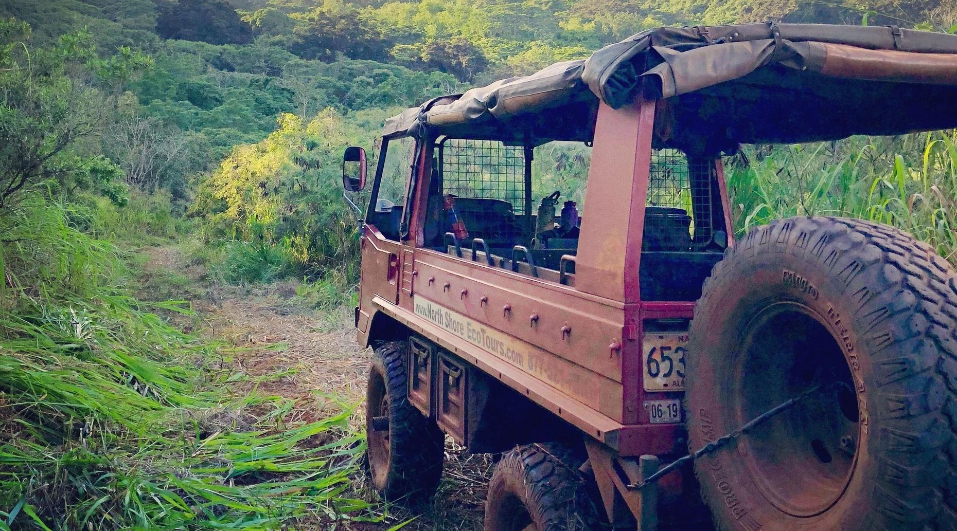 Puaʻa ʻĀhiu - Wild Boar Off-Road Expedition