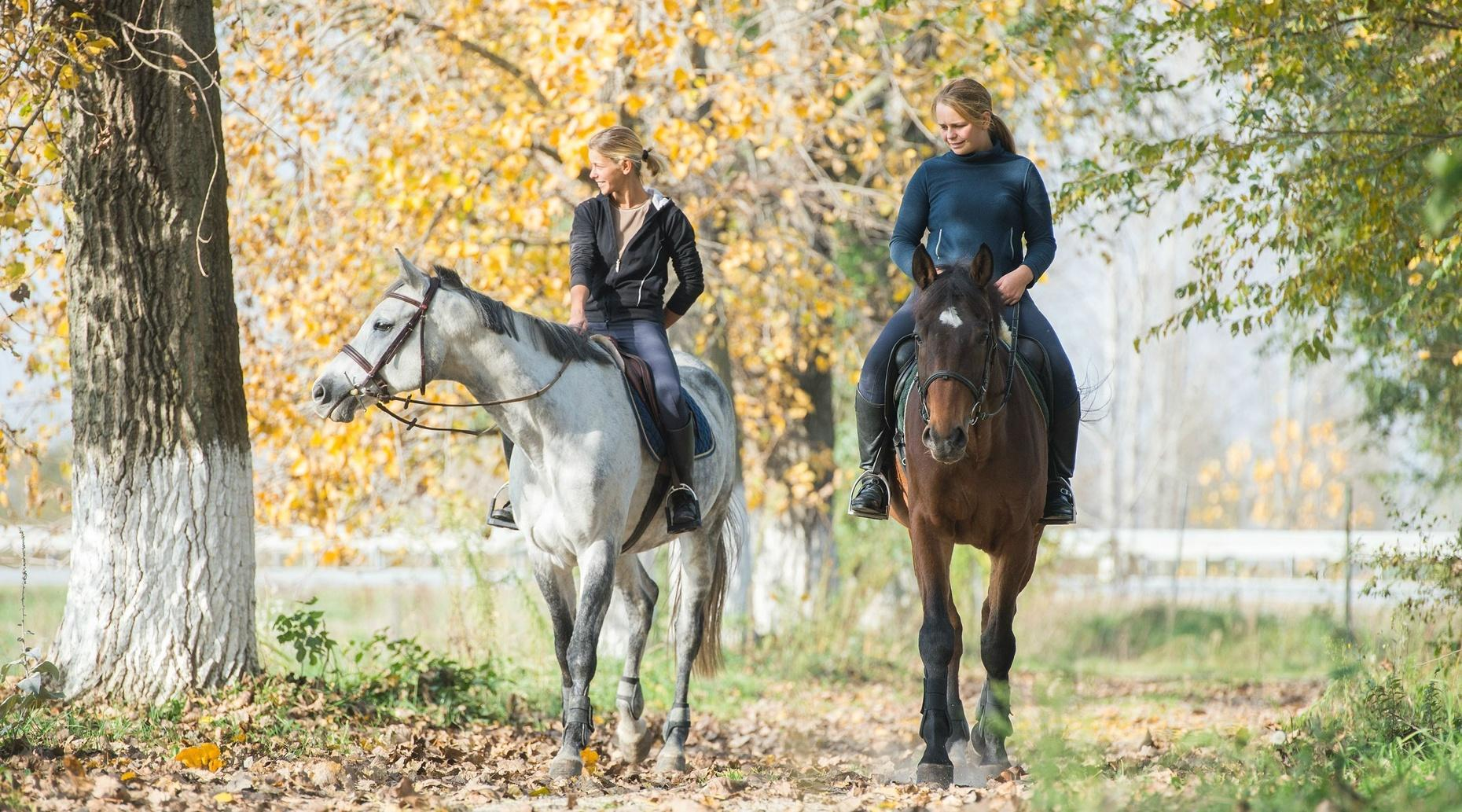 Private Horseback Riding Lesson in Queenstown