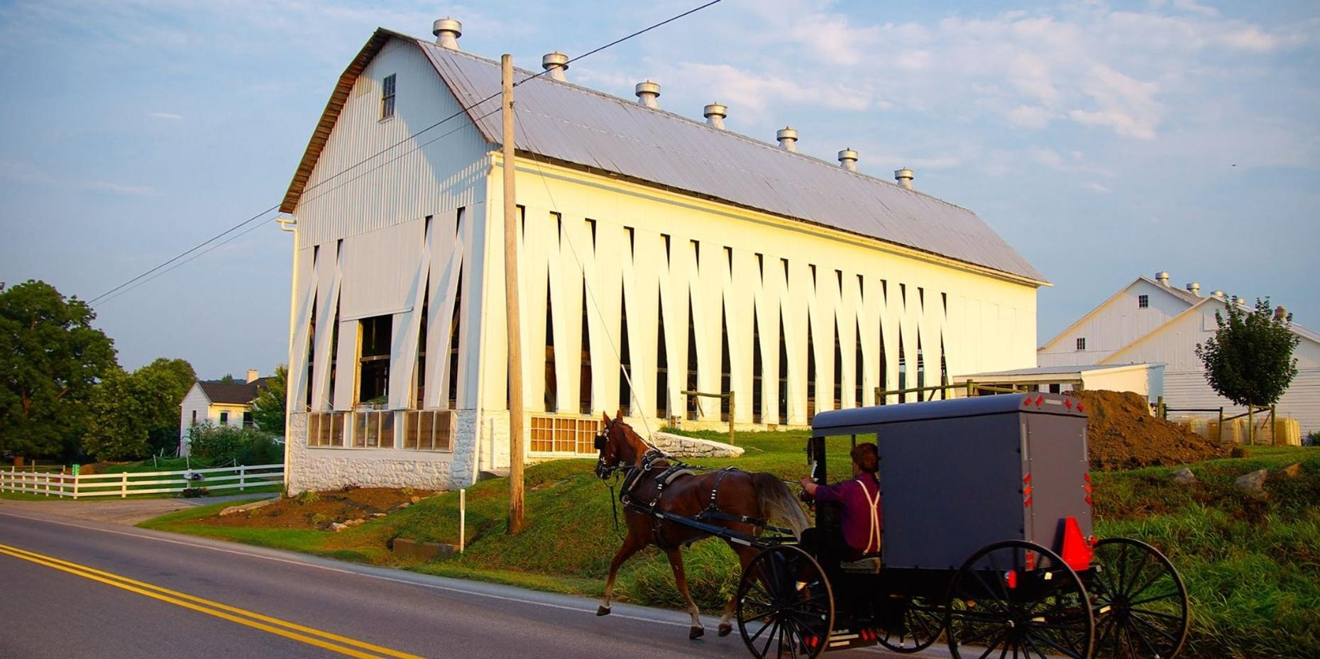 Amish Experience Package in Bird in Hand