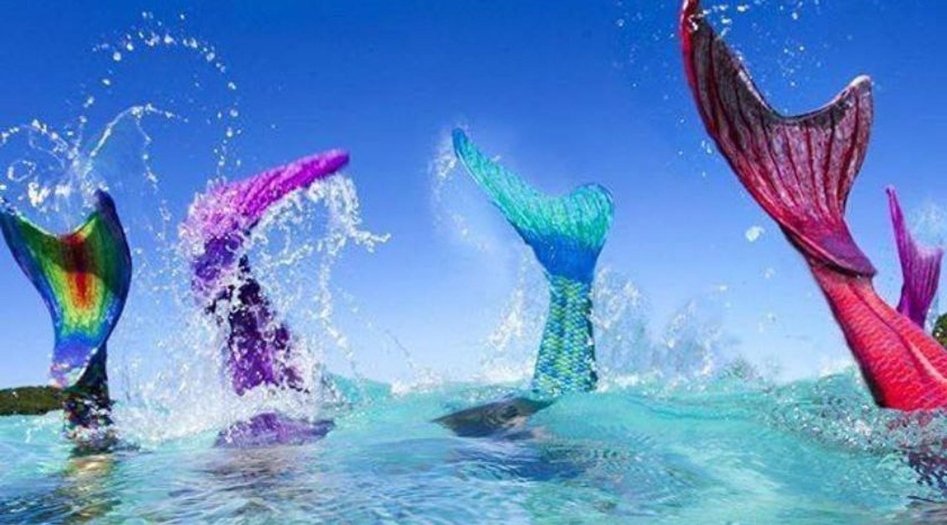 2-Hour Mermaid Class in Apollo Beach