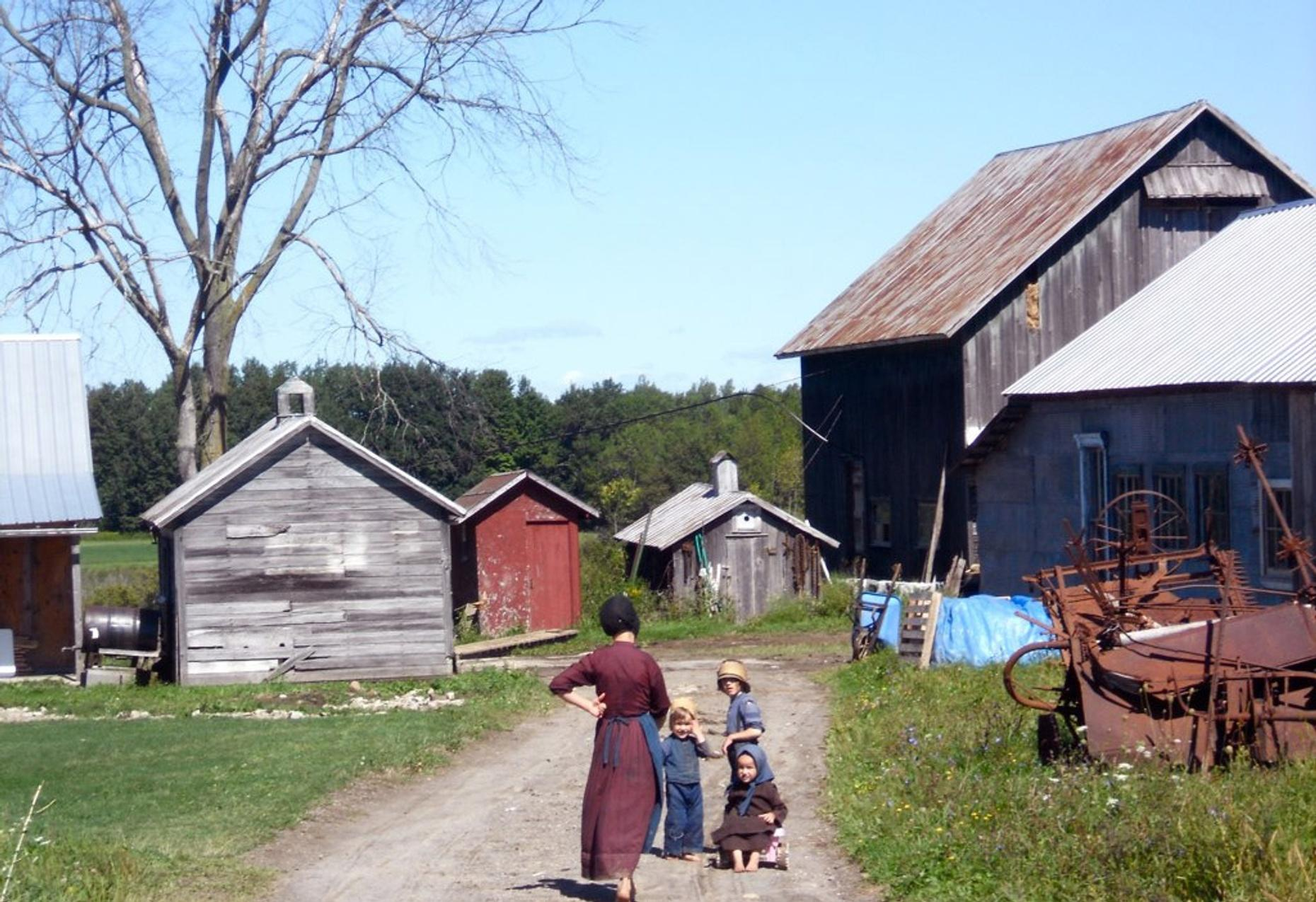One-Hour Amish Home Tour in Arthur
