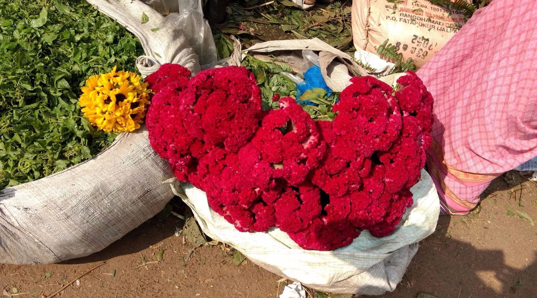 Morning Tour of a Flower Market in Kolkata
