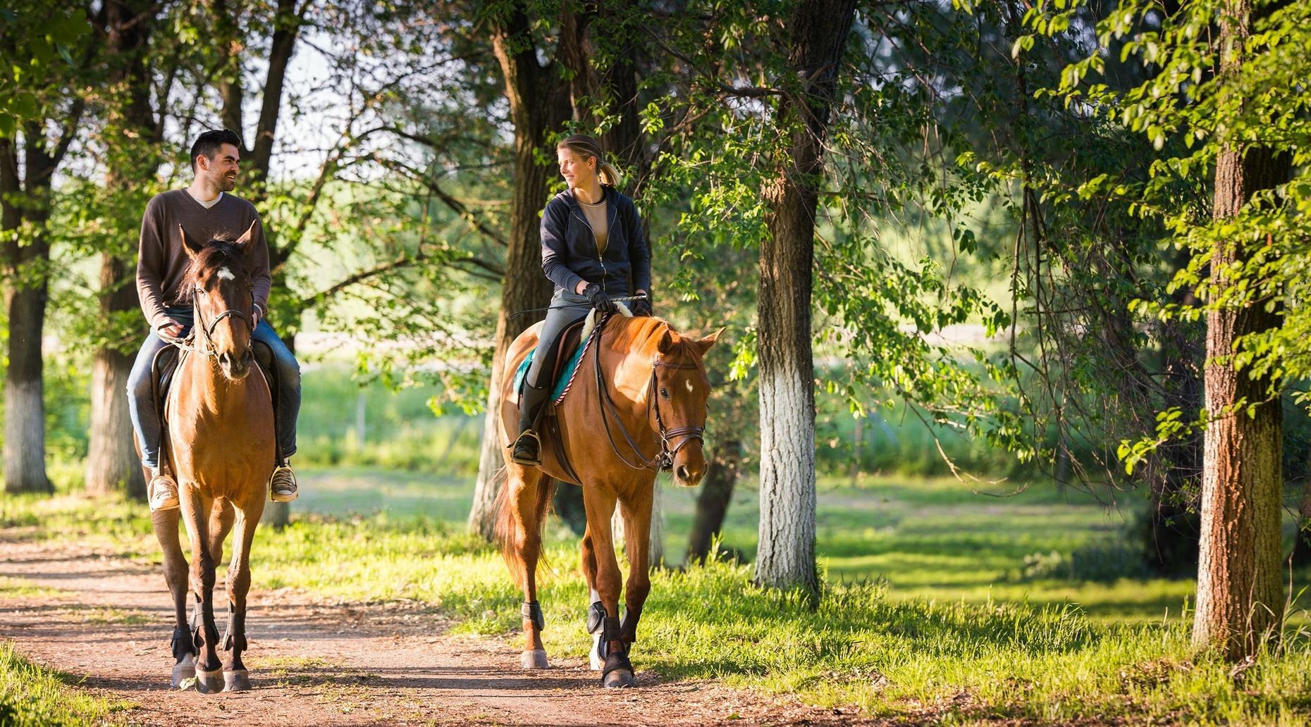 Zuma Canyon Group Horseback Ride in Agoura Hills