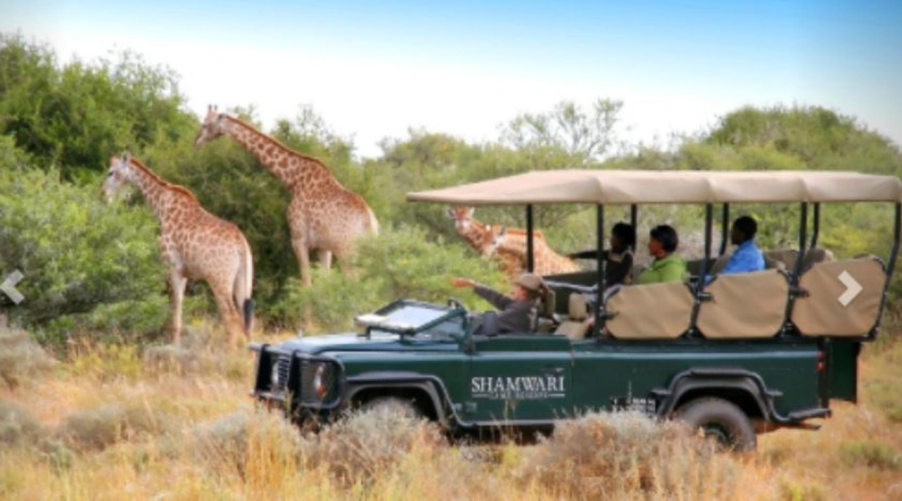 Dominican Republic Exotic Eco Safari
