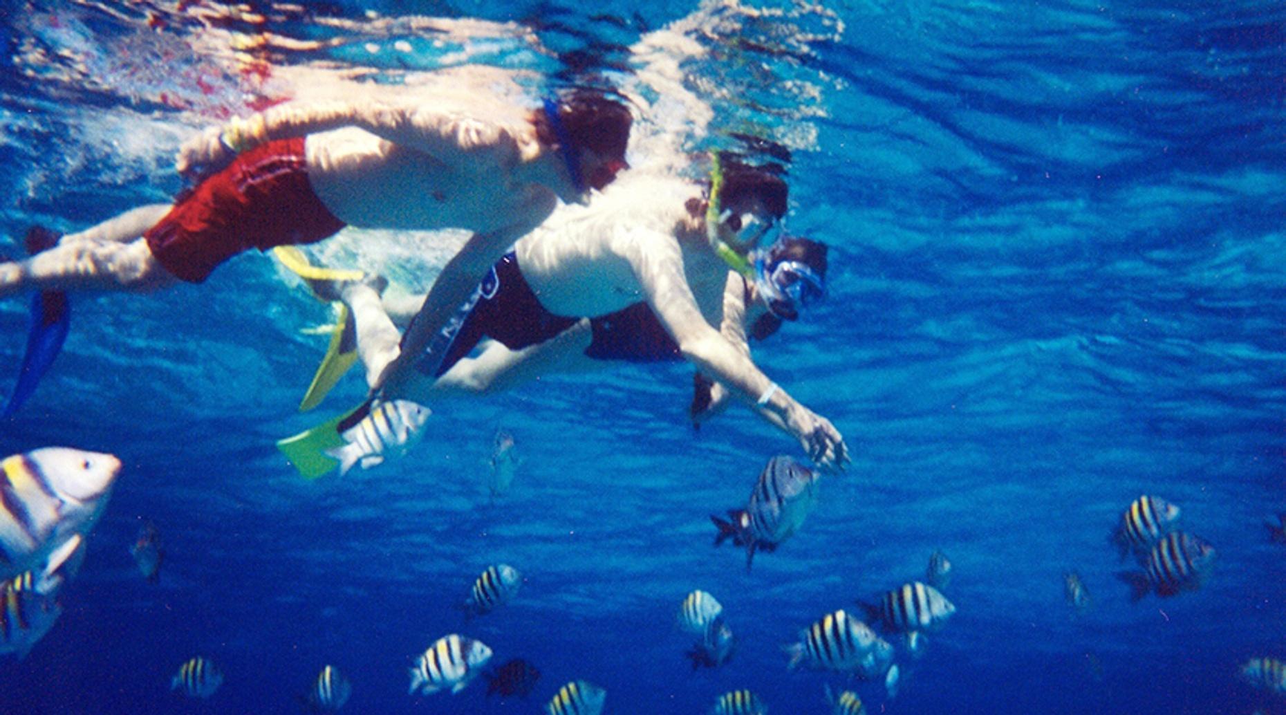 Yelapa Snorkeling Tour & Waterfall Visit