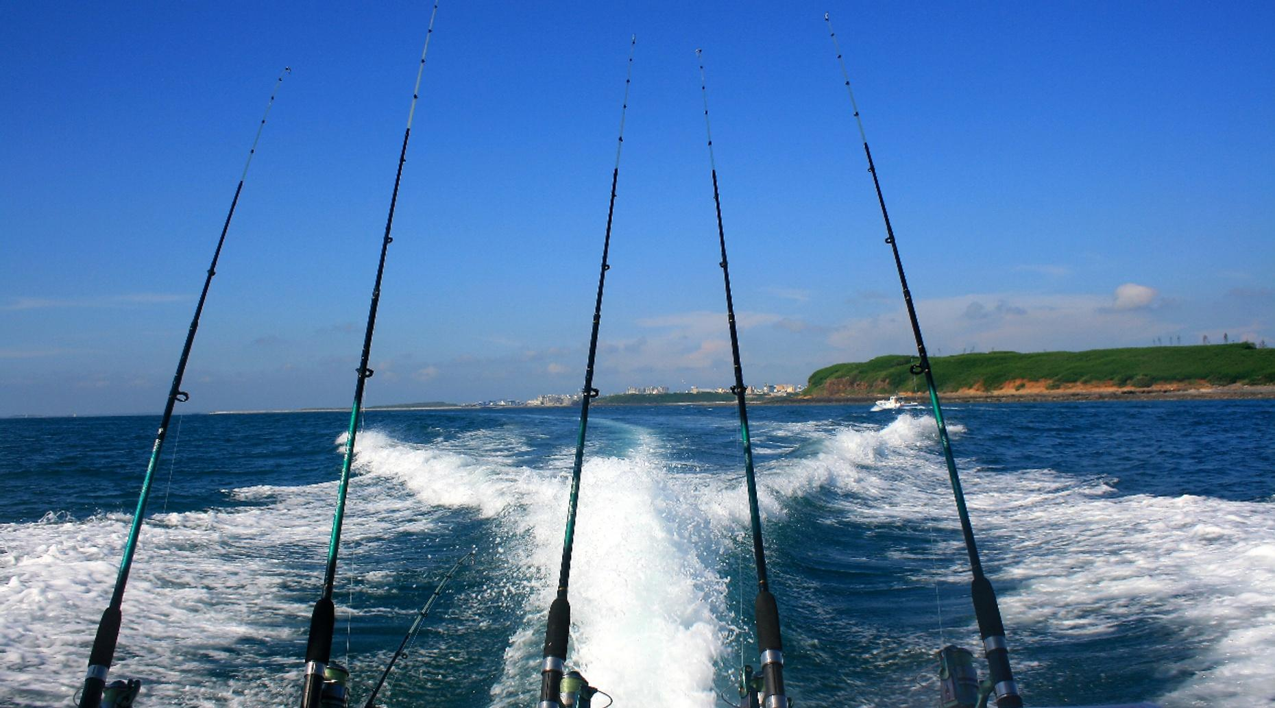 Half-Day Fishing Charter in the Gulf of Mexico