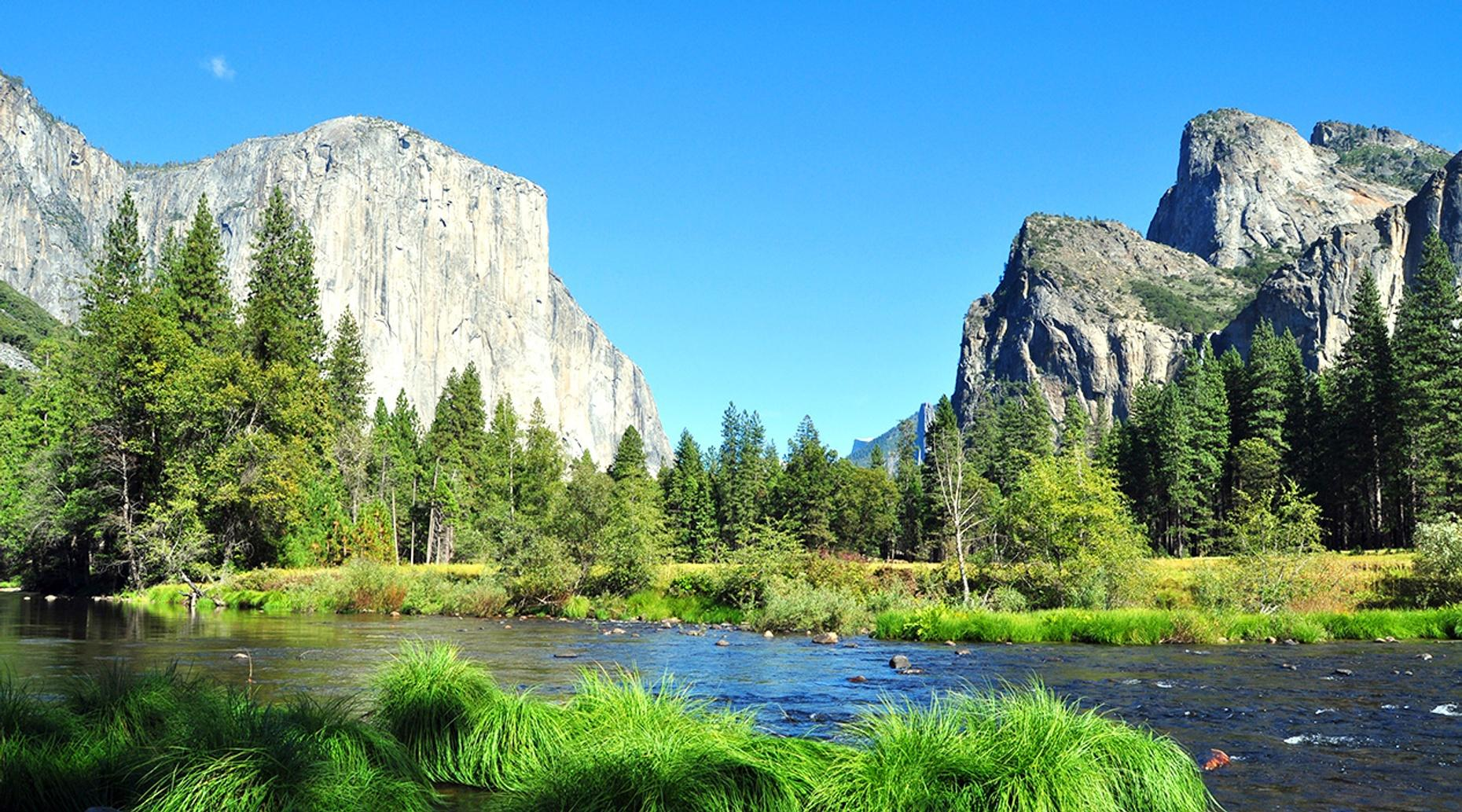 San Francisco to Yosemite Private Tour via Motor Coach