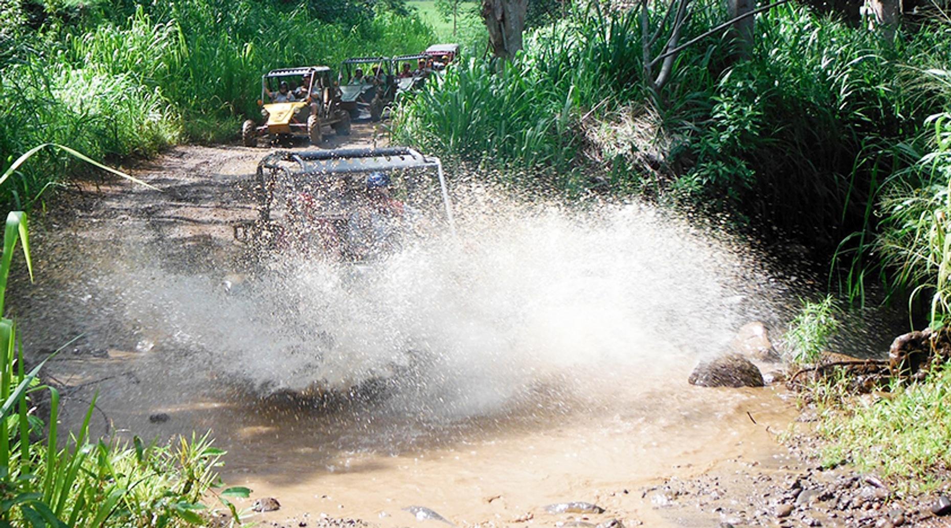 Mahaulepu Horse & Mud Buggy Tour
