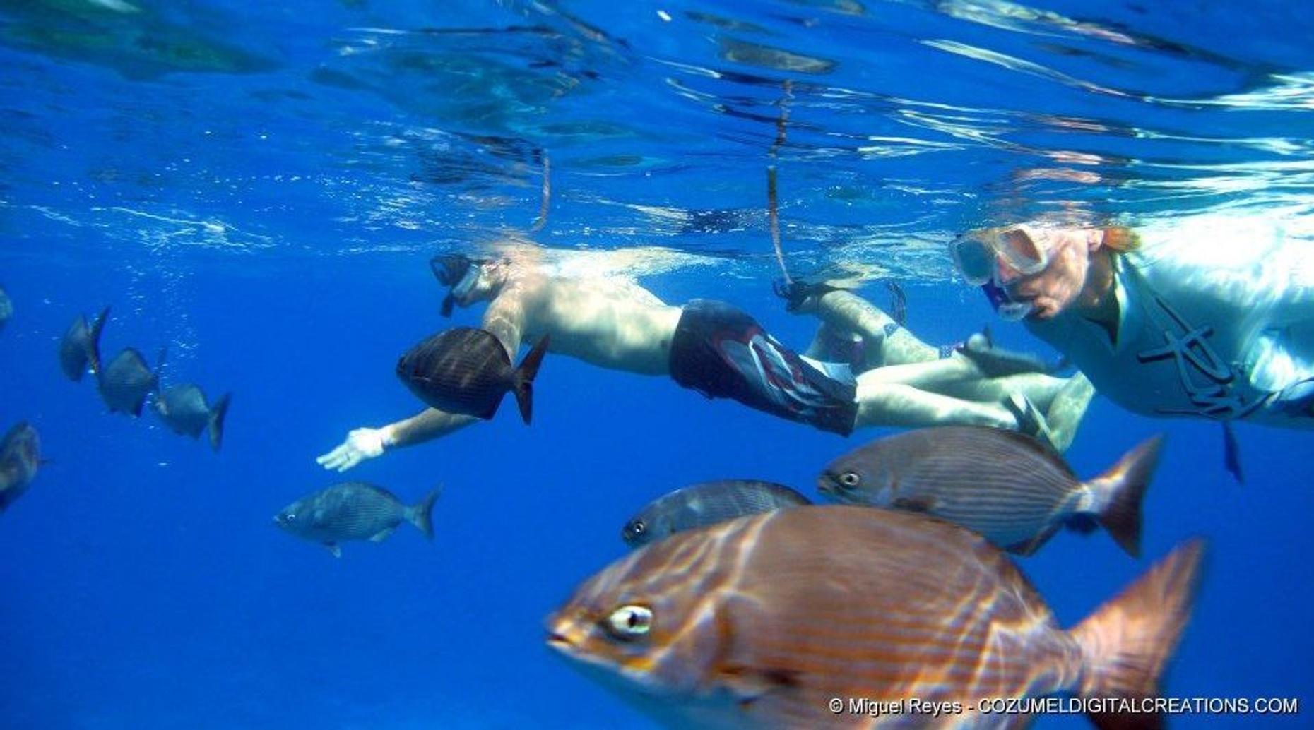 VIP Glass Bottom Boat & Snorkeling Adventure in Cozumel