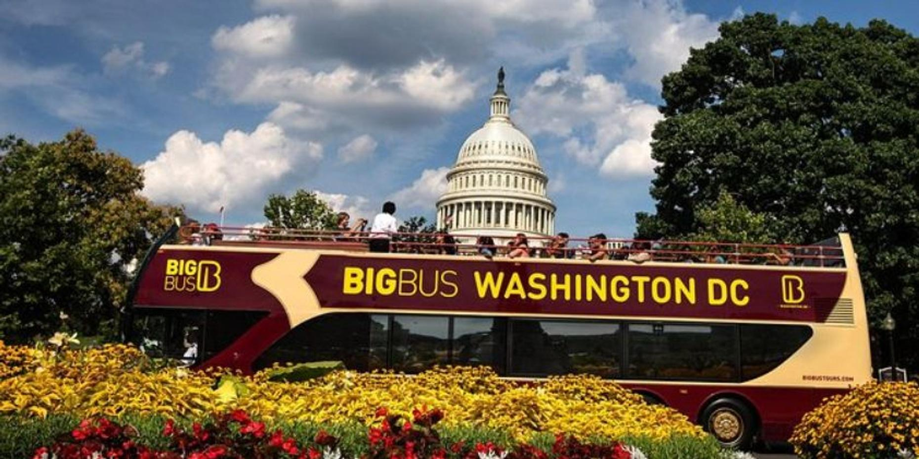 Premium 2-Day Hop-On Hop-Off Bus Tour of Washington DC