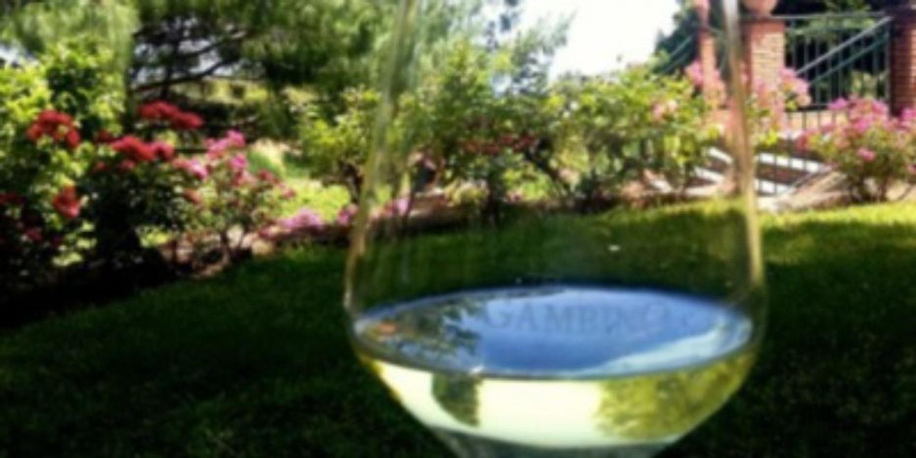 Private Etna Wine Tour and Lunch