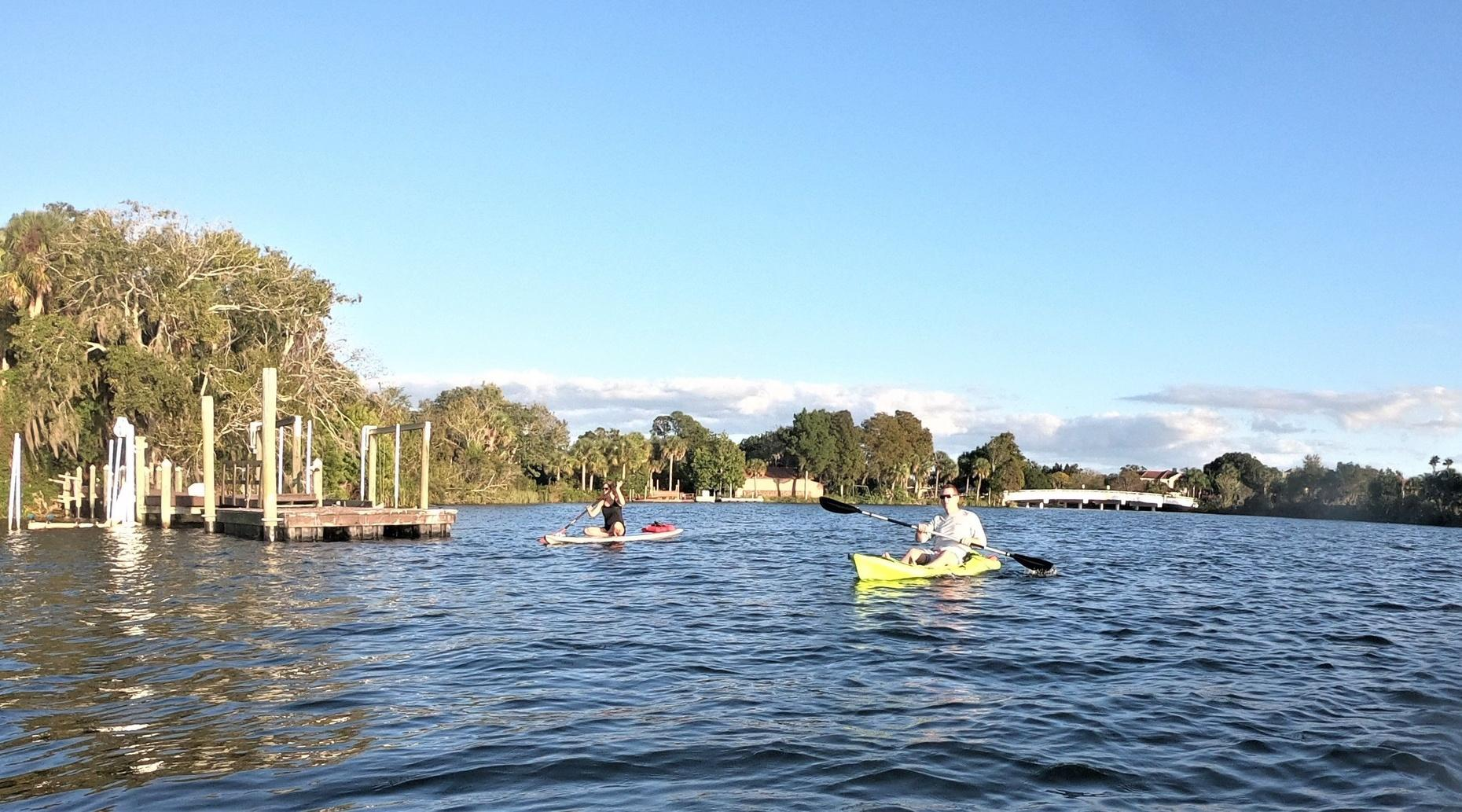 Full-Day Single Kayak Rental and Manatee Viewing in Crystal River