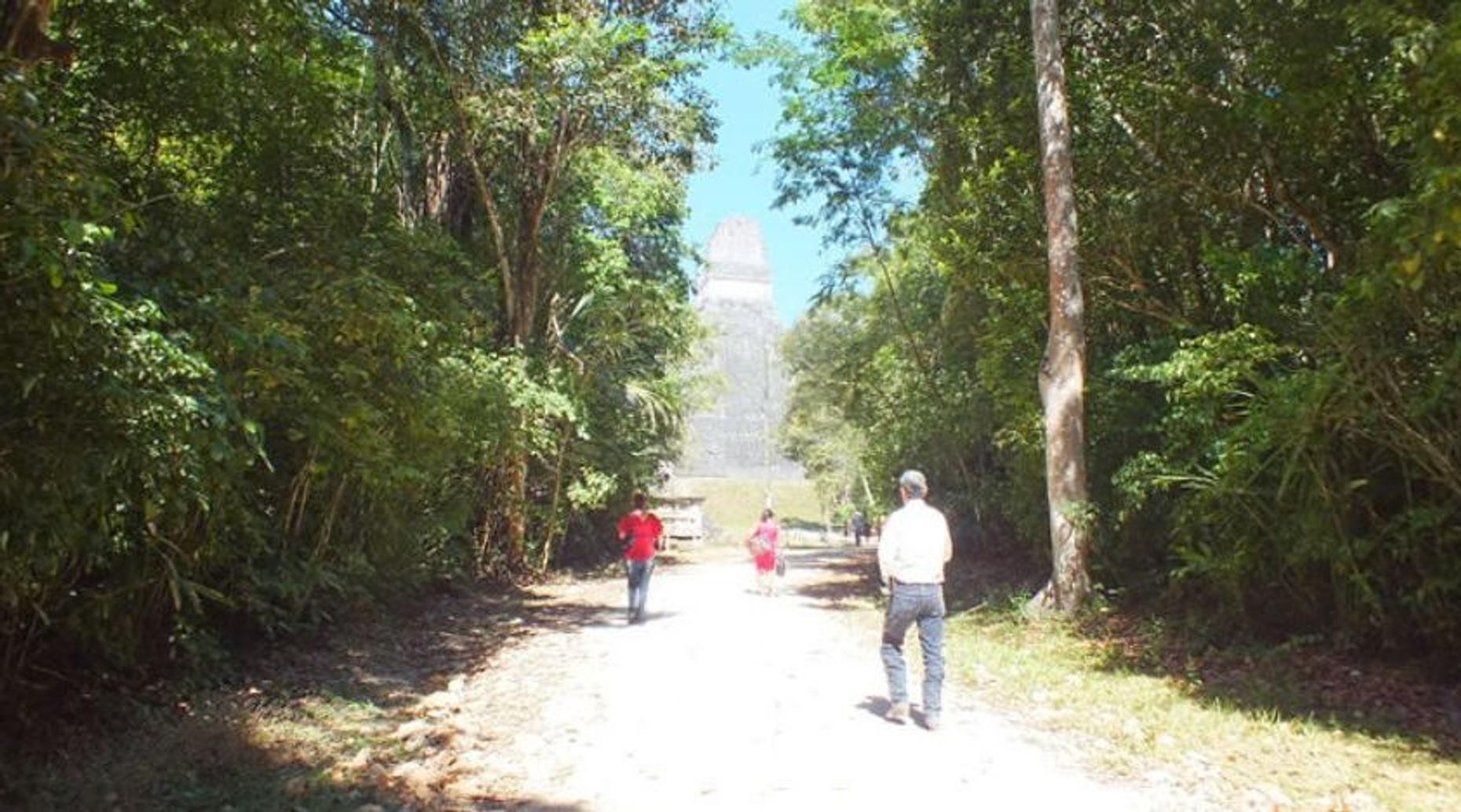 Early-Day Tour of the Tikal Ruins