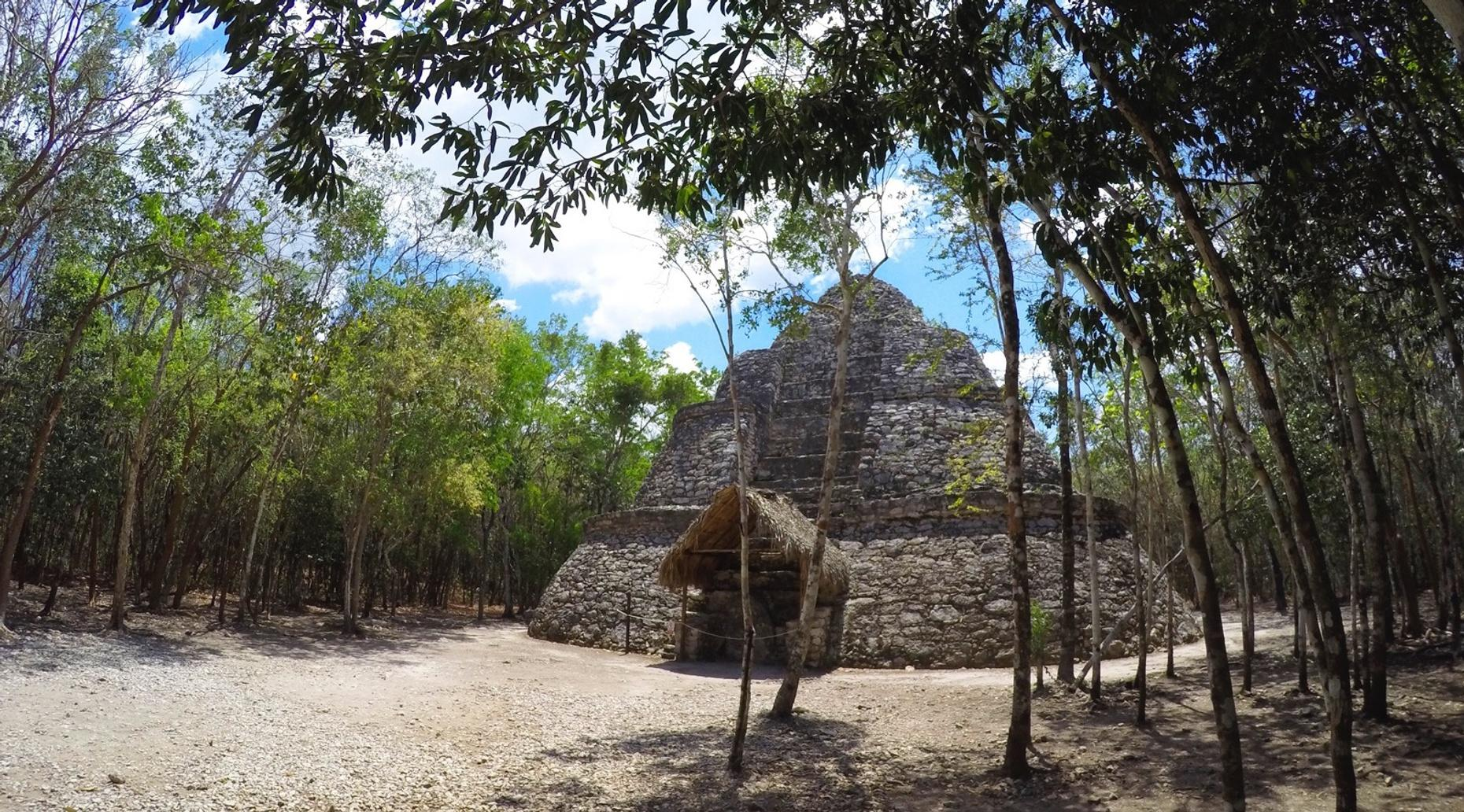 Guided Tour of Coba, Tulum & Cenote Tamcach-ha'