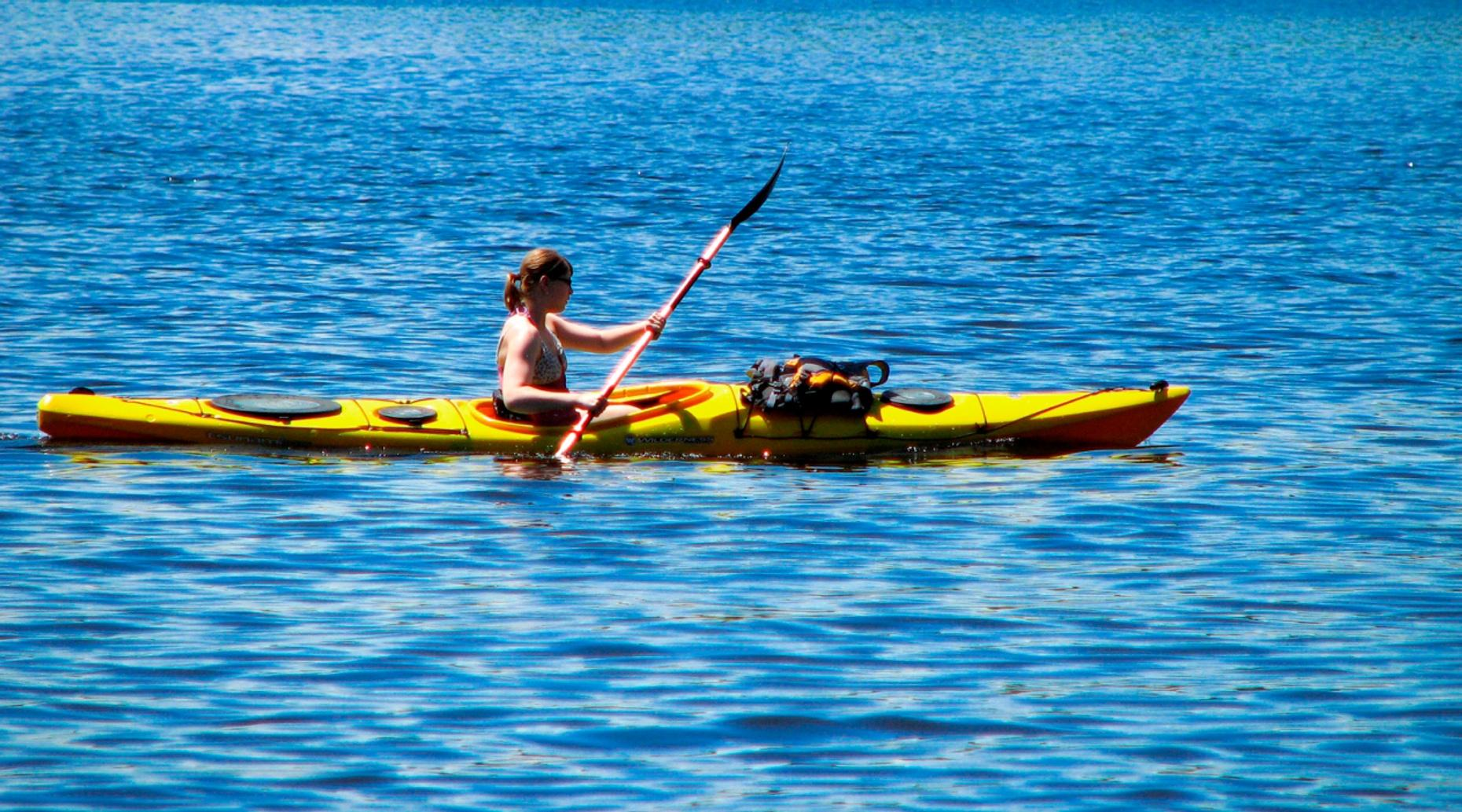One-Hour Single-Person Kayak Rental in Tampa