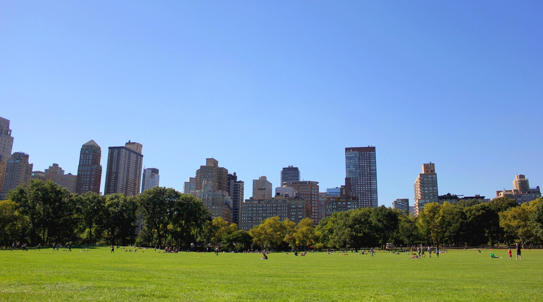 Three-Mile Personalized Running Tour in New York City