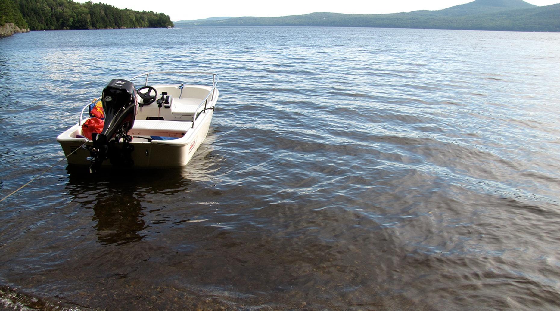 Three-Hour Boston Whaler Boat Rental in Oak Creek