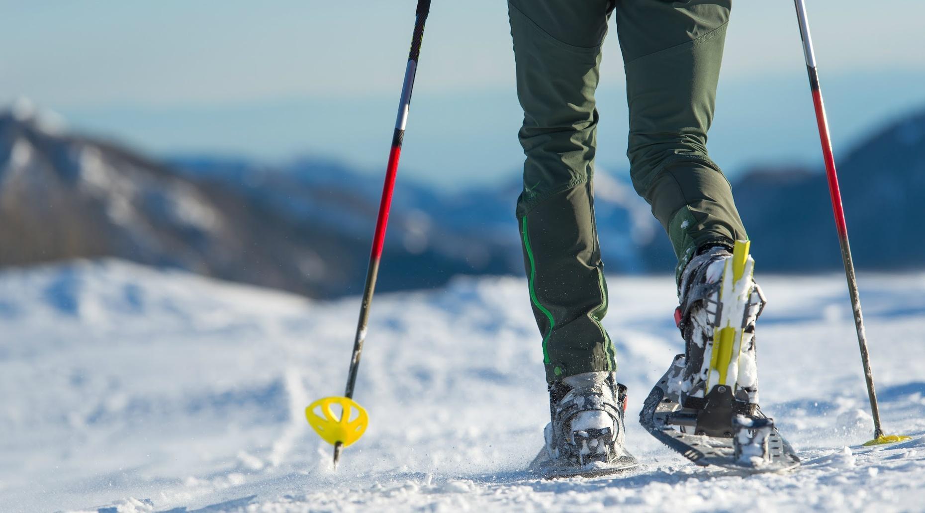 Half-Day Snowshoeing Tour in Colorado