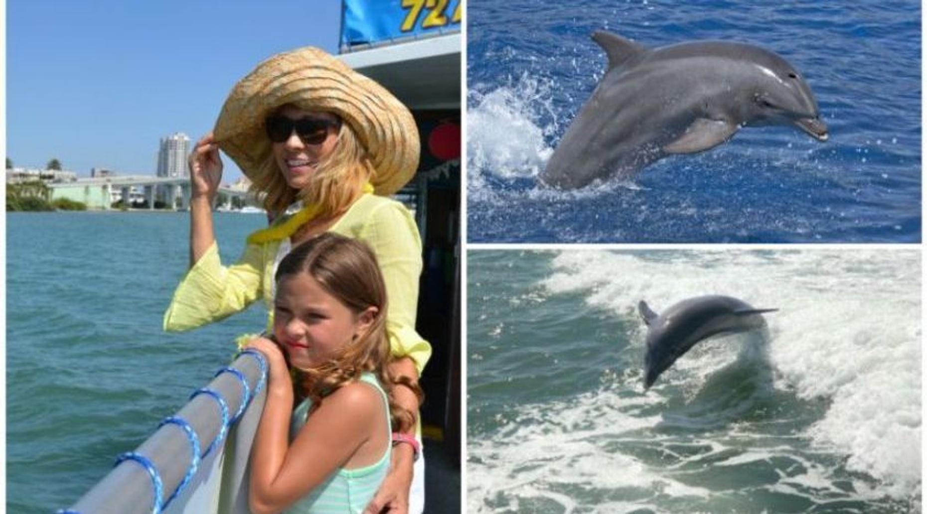 Dolphin Exploration Tour