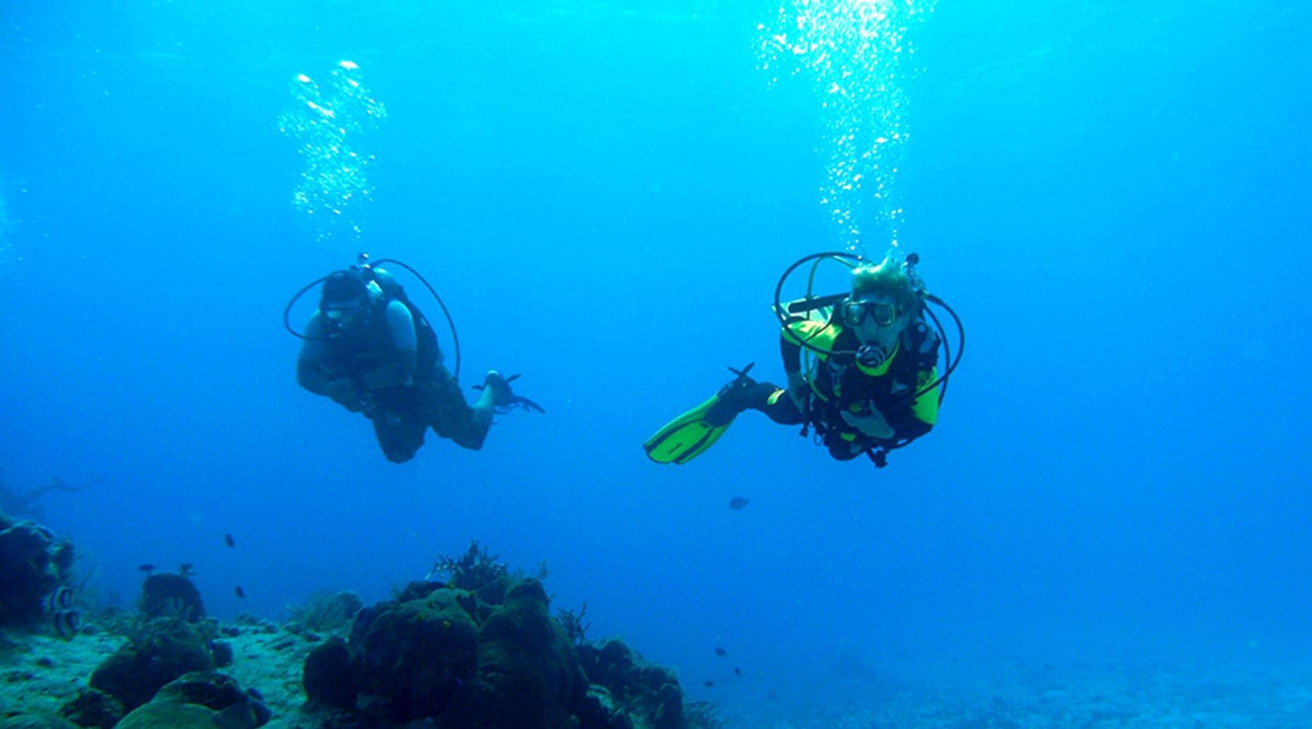 Scuba Diving with Grouper in Boynton Beach