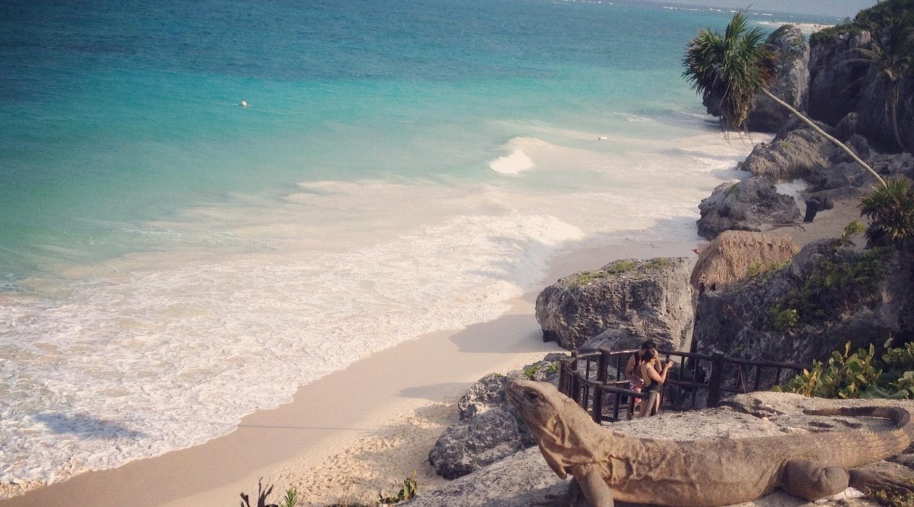 Tulum Private Tour from Cancun/Riviera Maya