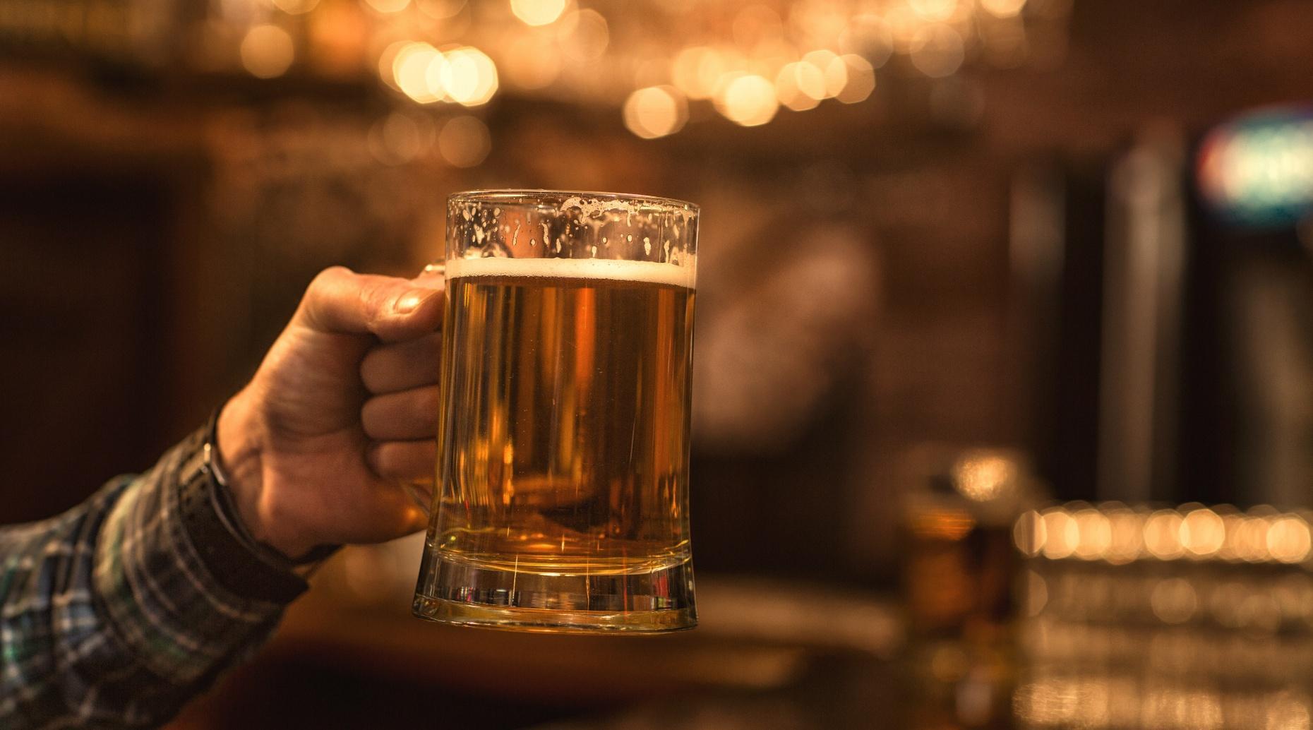 Lagunitas Brewery Tasting Tour in Petaluma