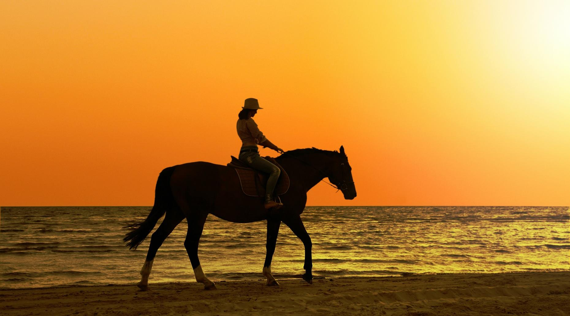 Sunset Beach Horse-Riding Adventure in San Diego