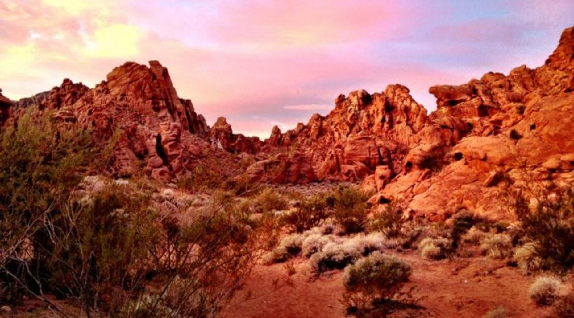 Valley of Fire, Lake Mead & Moapa Valley Tour
