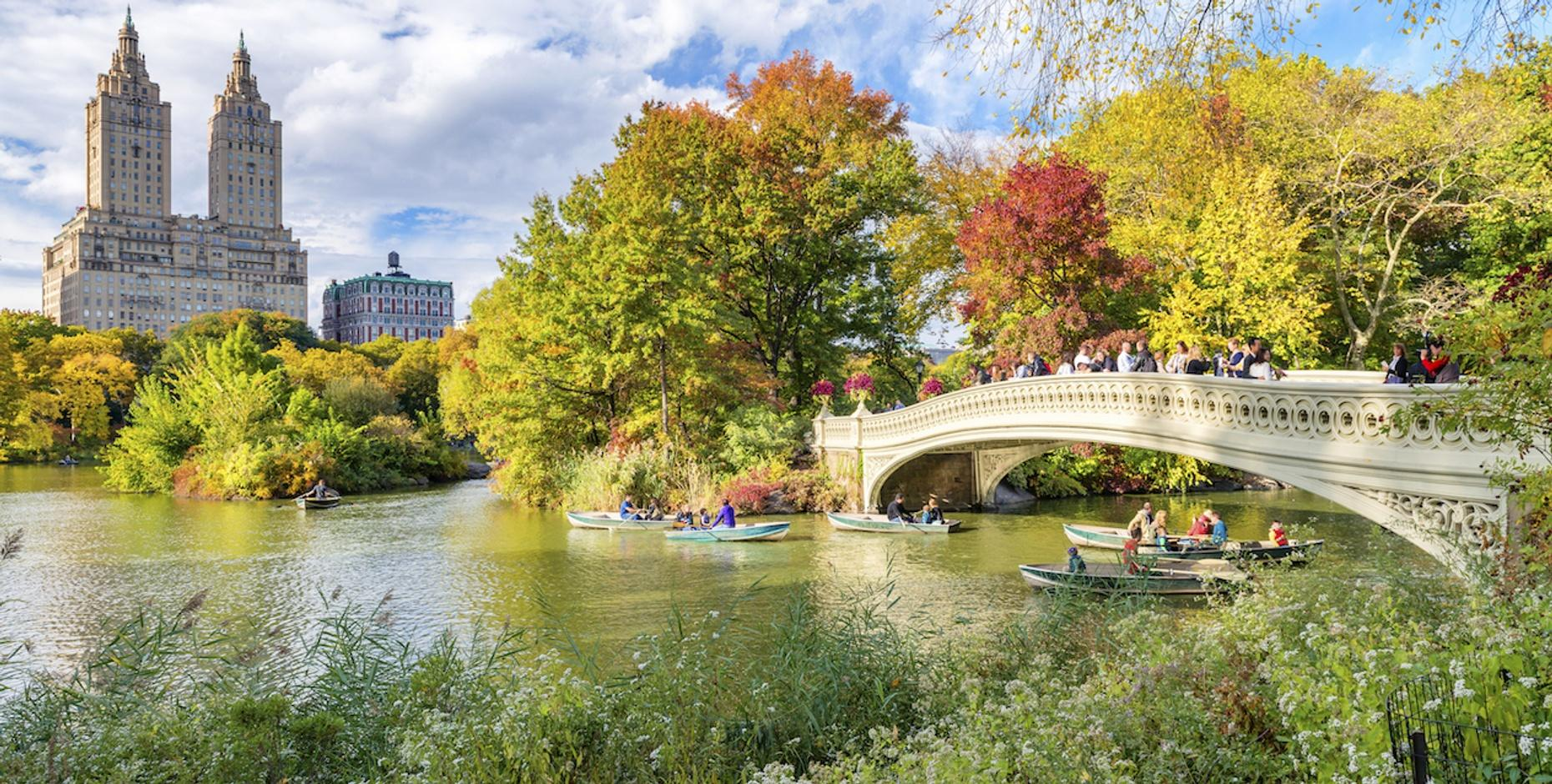 Secrets of Central Park Guided Walking Tour