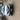 FOTON TUNLAND  P201 Utility Single Cab 2dr Man 5sp 4x4 2.8DT