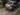SUBARU OUTBACK 2.0D 4GEN 2.0D Premium. Wagon 5dr Man 6sp AWD 2.0DT (Sat Nav) [MY10]