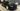 The craziest modified cars of SEMA 2018 Honda Civic Type R