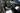 Land Rover Range Rover Velar P250 L560 P250 SE Wagon 5dr Spts Auto 8sp AWD 2.0T [MY19.5]