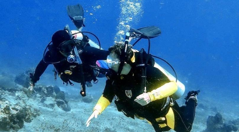 Try SCUBA Diving Adventure In Cozumel