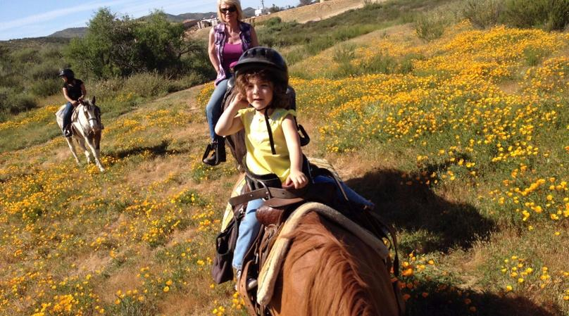1-Hour Temecula and Murrieta Horseback Ride