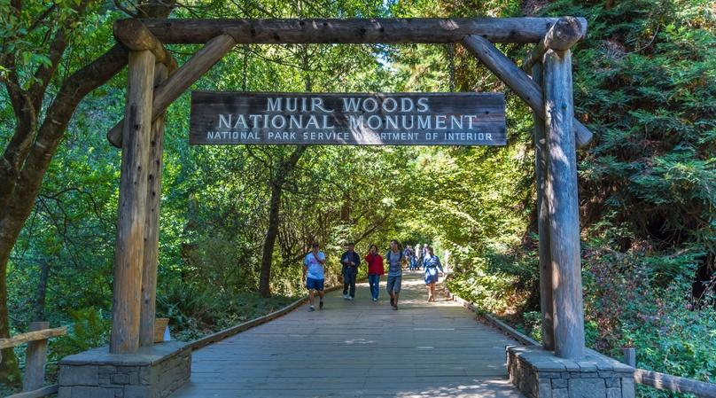 Bike the Bridge & Shuttle to Muir Woods - Small group Tour
