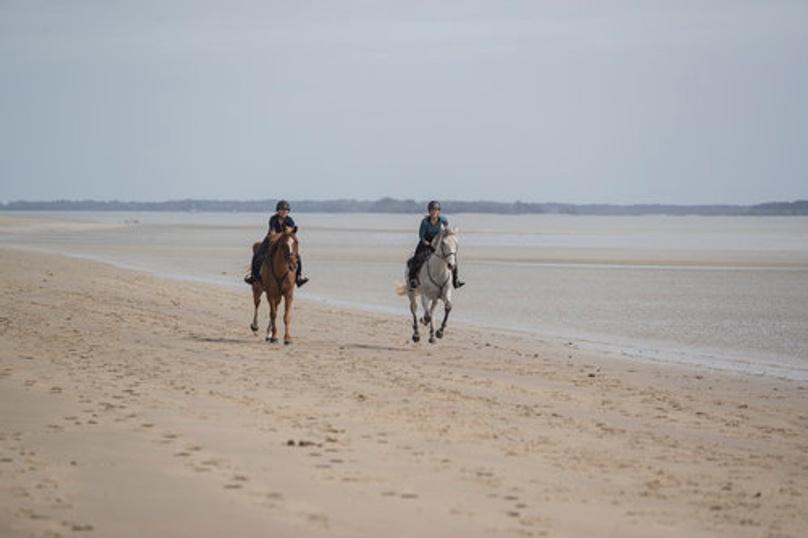 Horseback Beach Ride on Daufuskie Island