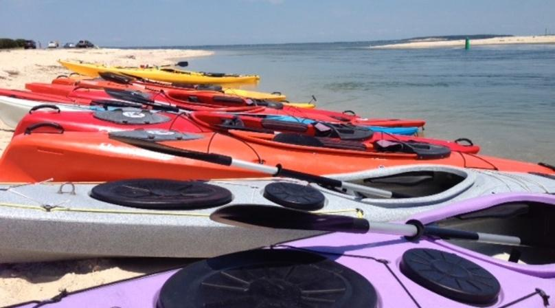 2-Hour Guided Kayak Tour in Southampton