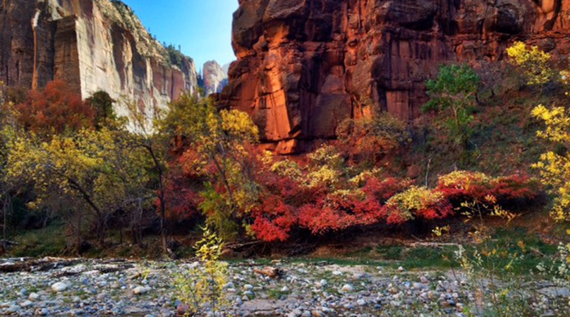 Zion Canyon Private Day Tour